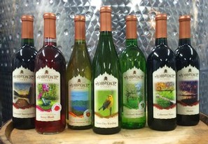 Adirondack Winery First Bottles Labeled with New Label