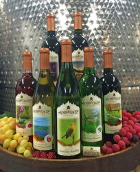 Adirondack Winery Newest Labeled Bottles on Barrel with Fruit