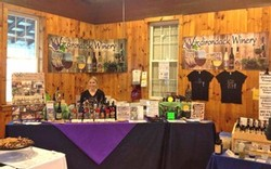 Our booth at the inaugural Hudson Berkshire Wine & Food Festival in May 2013.