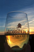 Adirondack Winery Stemless Flex Wine Glass